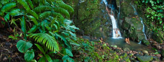 Papouasie Nouvelle Guinée Fixeur Papou cascade